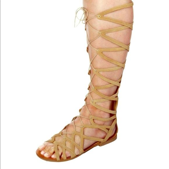 0168c47879c Steve Madden Hercules Gladiator Sandal Size 9